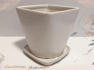 Ivory Flower Pot with Pattern